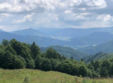 sections/August2019/gothal-tury-v-okoli-7-A6N.jpg
