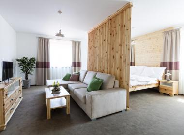sections/October2018/gothal-sk-apartmany-v-nizkych-tatrach-family-apartman-obyvacia-miestnost-iii.jpg